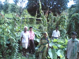 Kitchen Garden and Beneficiaries in Pipli-B